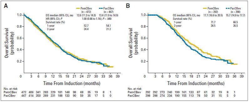 PointBreak試験:非小細胞肺癌に対する2レジメンの維持療法の比較試験_e0156318_22171739.jpg