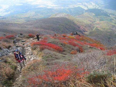 南くじゅうの紅葉 久住山と俊ちゃんの今日の山歩き_c0077338_22295963.jpg