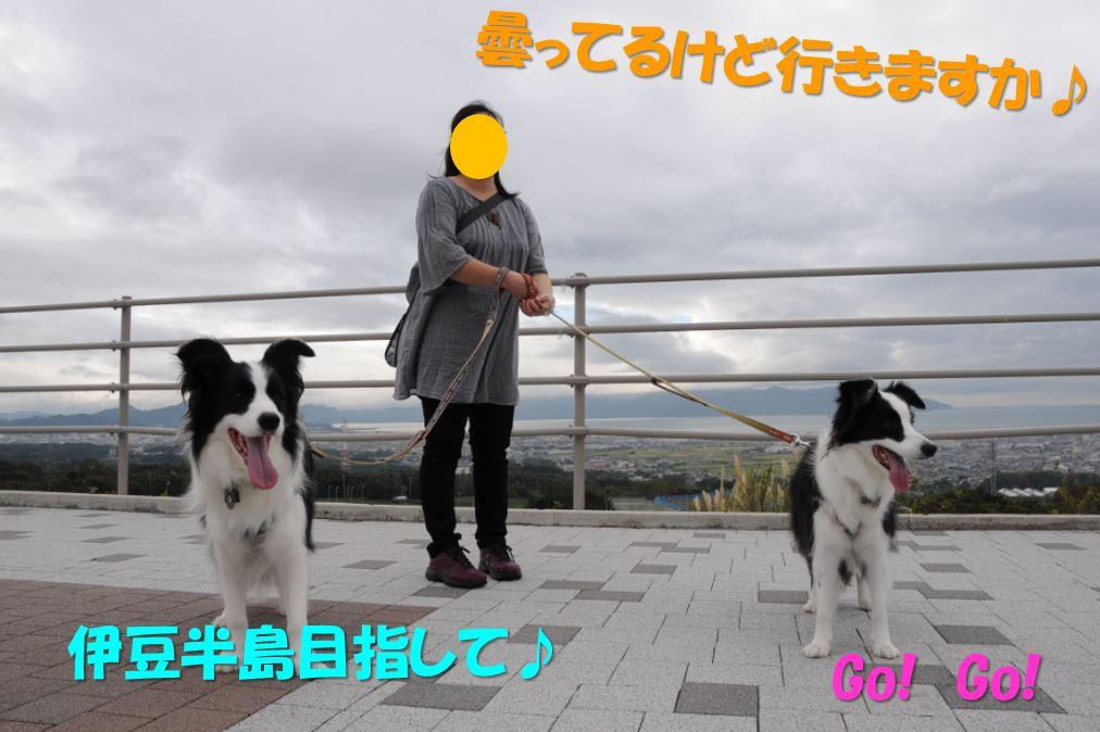 c0147241_2042473.jpg