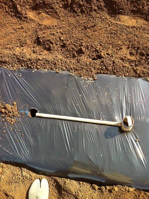 今朝 蚕豆&グリンピース、スナックエンドウの播種をしました_c0222448_15551864.jpg