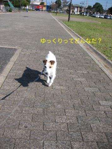 c0179472_17392839.jpg