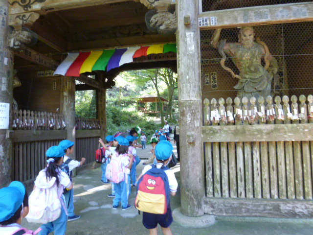 槇尾山登山(年中)_b0277979_19294828.jpg