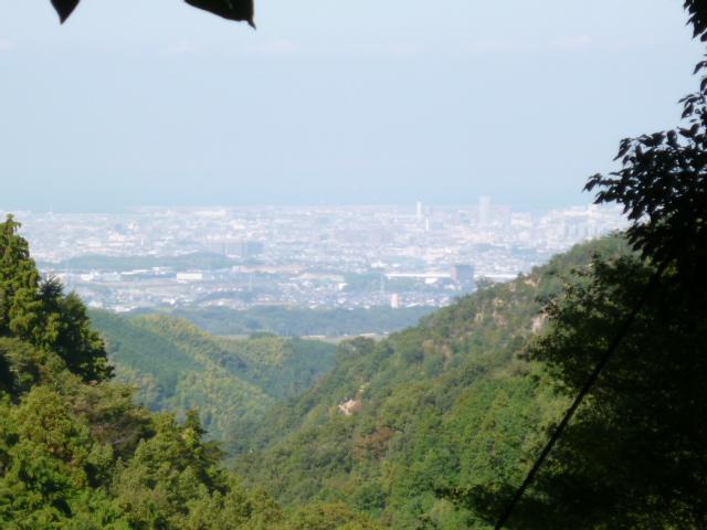 槇尾山登山(年中)_b0277979_19295430.jpg