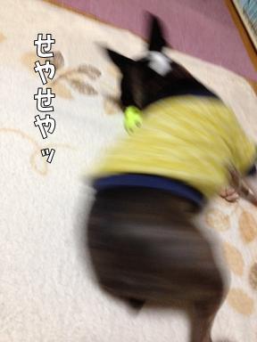 d0256580_10171477.jpg