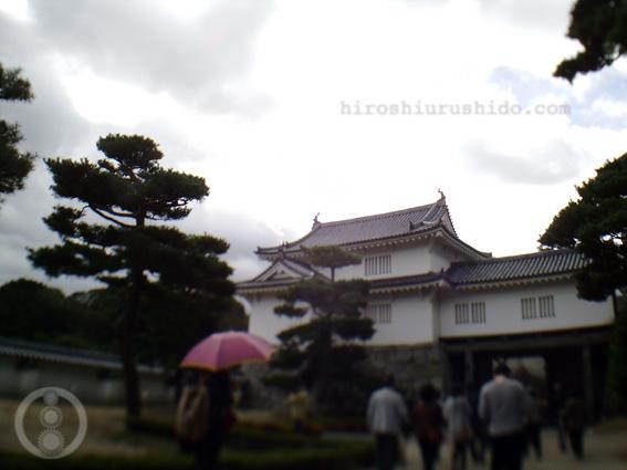 二本松の霧ヶ城の菊_c0229485_1525376.jpg