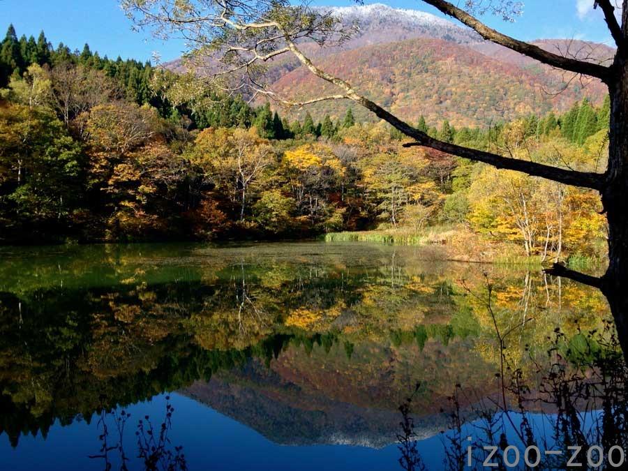 秋、秋、御鹿池_c0223095_11462251.jpg