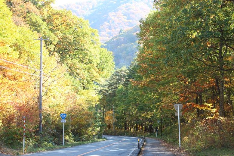 紅葉を見られる幸せ_f0227395_19355566.jpg