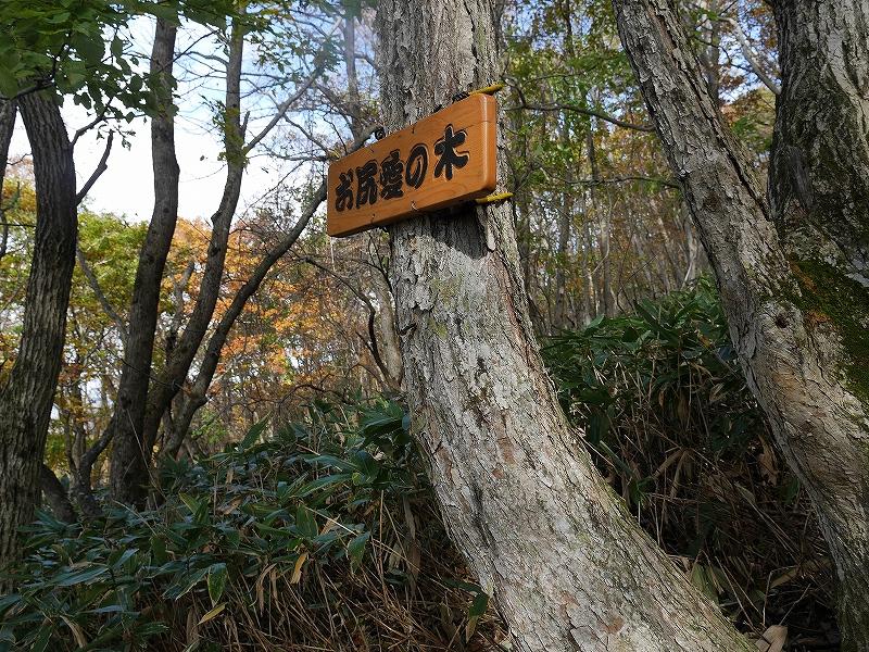 10月28日、稀府岳(まれっぷだけ)と伊達紋別岳_f0138096_22381674.jpg