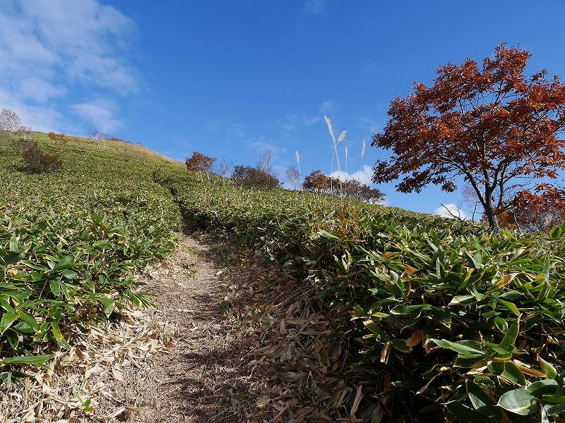 10月28日、稀府岳(まれっぷだけ)と伊達紋別岳_f0138096_22382440.jpg