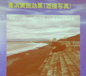c0220597_5583246.jpg