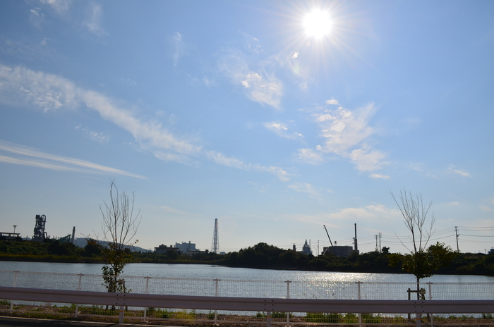 """""""色づき始めるヤマボウシとハナミズキそして、秋の空雲""""_d0153941_157127.jpg"""