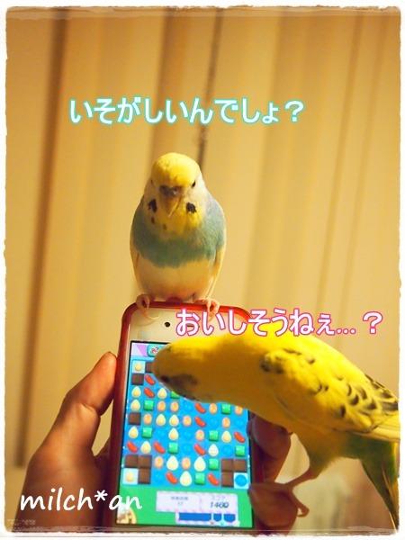 b0115642_22325024.jpg