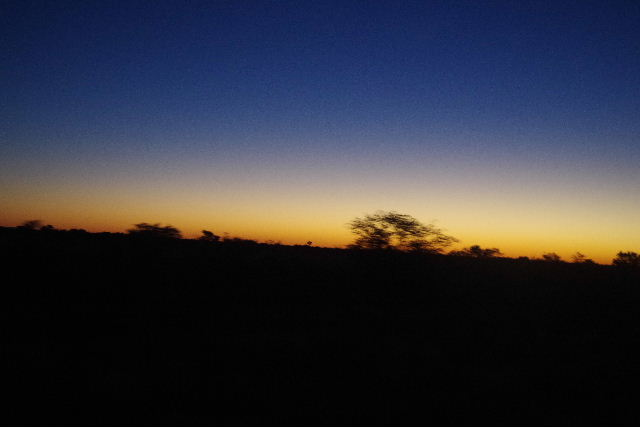 ナミビアの旅(36) カオコランドからエトーシャへ_c0011649_0393055.jpg