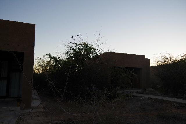 ナミビアの旅(36) カオコランドからエトーシャへ_c0011649_04149.jpg