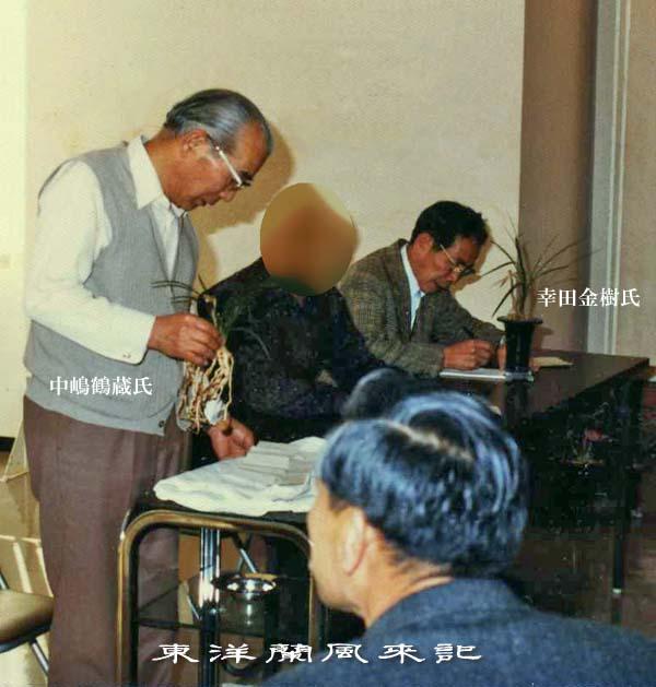 東洋蘭「紫秀蘭の覆輪中斑」             No.1334_d0103457_1261267.jpg