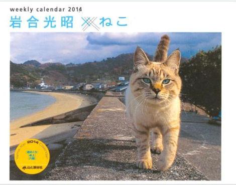 渋谷再開発と岩合光昭のカレンダー_d0183174_19511035.jpg