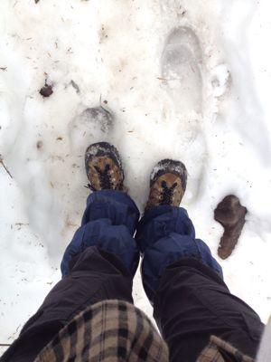 冬はすぐそこ!_b0237592_345464.jpg