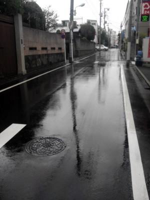 豊島区の高松で瓦修理工事_c0223192_21155226.jpg