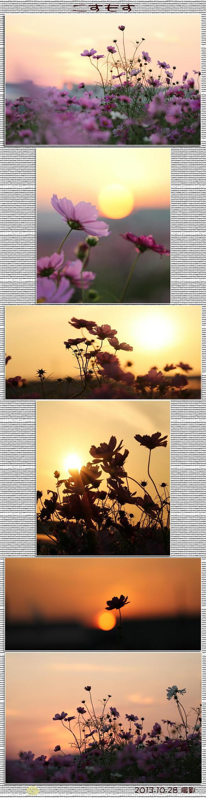 f0164592_20202715.jpg