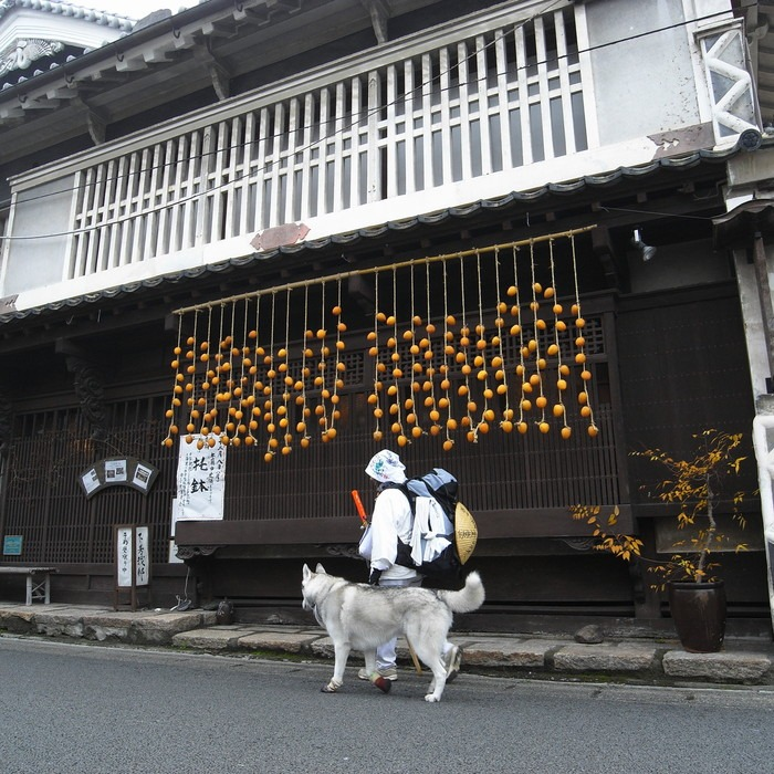 Memory of the second pilgrimage with husky HANA_c0049299_16581895.jpg