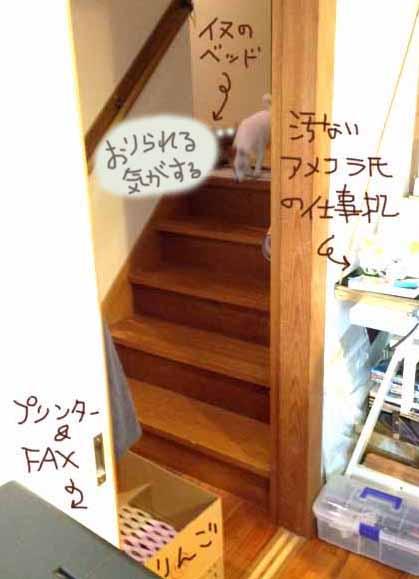 f0131628_0164426.jpg