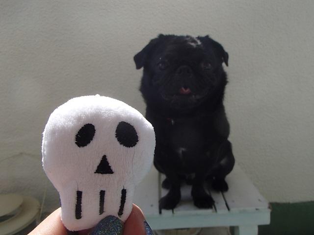 Happy Halloween (CHAPPY  編)_d0105967_10184067.jpg