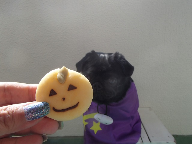 Happy Halloween (CHAPPY  編)_d0105967_10211447.jpg