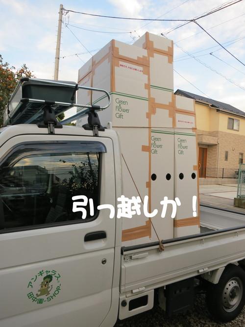 b0200291_22255210.jpg