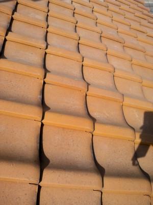 黄金色の立物(たちもの)_c0223192_226037.jpg