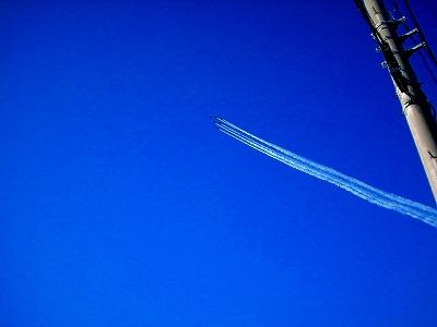 飛行機・・・見ませんよ。_f0193702_23125316.jpg