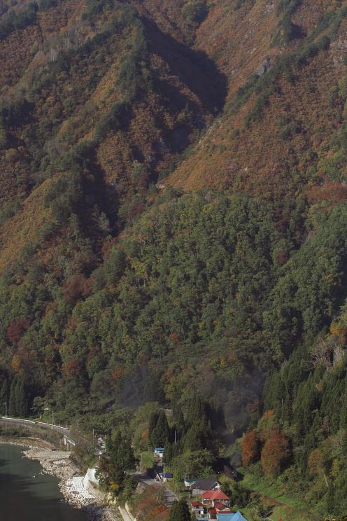 山は緑から彩りへ、汽車は黒煙細く - 2013年秋・只見試運転 -  _b0190710_035772.jpg