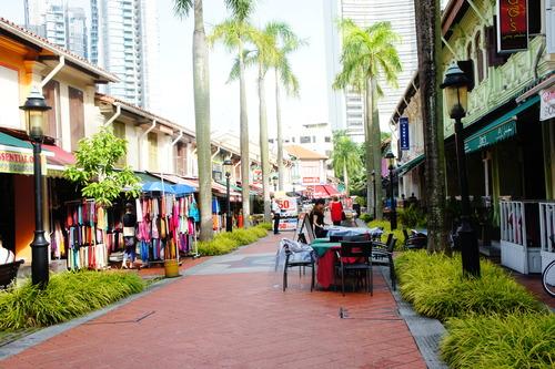 シンガポール旅行記 (アラブストリート)_f0215714_1674261.jpg