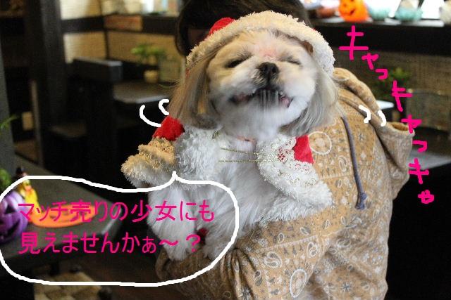 本日11月1日で、犬濯屋 川村は「5周年」を迎えました!!_b0130018_2055134.jpg