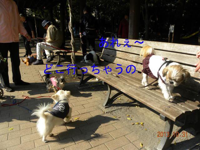 b0203018_1720394.jpg