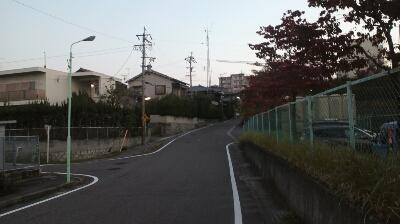 ハムヲさんの朝ラン日記  (2013/10/31)_a0260034_645080.jpg