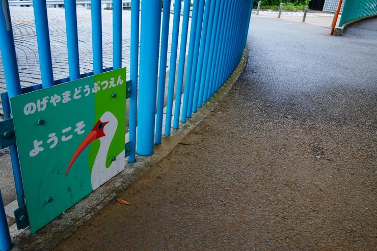 横浜市立野毛山動物園~FPD International 2013 その7_a0287336_2443212.jpg