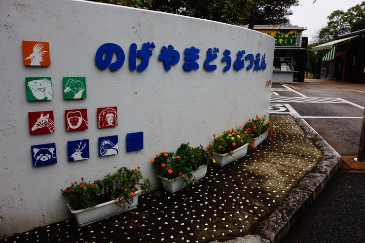 横浜市立野毛山動物園~FPD International 2013 その7_a0287336_2444890.jpg