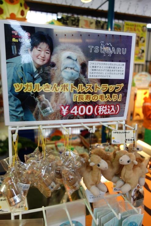 横浜市立野毛山動物園~FPD International 2013 その7_a0287336_2525738.jpg