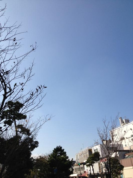 鎌倉Day_a0267845_0122424.jpg