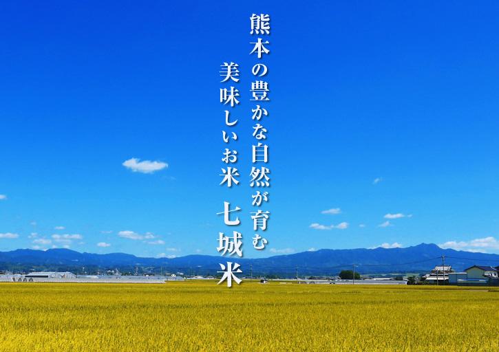 平成25年度新米 熊本の豊かな自然が育む、美味しいお米「七城米」好評発売中!!_a0254656_16303764.jpg