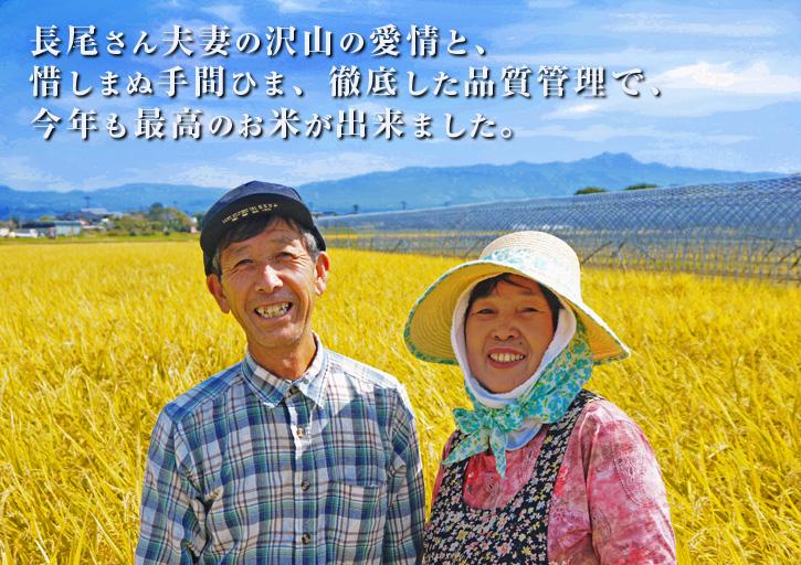 平成25年度新米 熊本の豊かな自然が育む、美味しいお米「七城米」好評発売中!!_a0254656_16423058.jpg