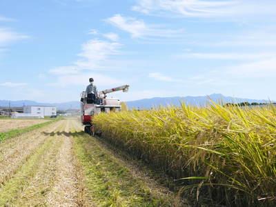 平成25年度新米 熊本の豊かな自然が育む、美味しいお米「七城米」好評発売中!!_a0254656_16505247.jpg