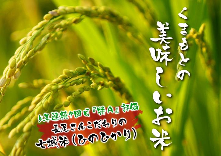 平成25年度新米 熊本の豊かな自然が育む、美味しいお米「七城米」好評発売中!!_a0254656_17554597.jpg