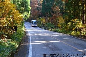 紅葉の森、美女平_a0243562_18193823.jpg