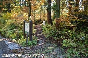 紅葉の森、美女平_a0243562_18202457.jpg
