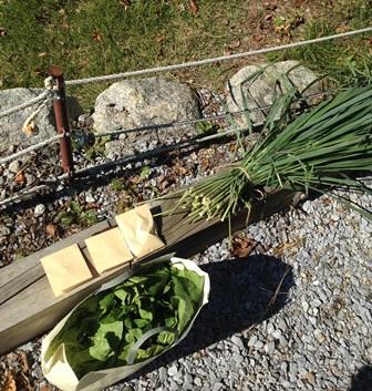 秋の収穫物をいただきました_d0152765_19374293.jpg