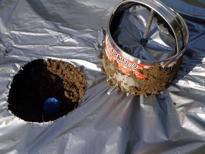 シルバーマルチ使用し、初のソラマメの種蒔き:10・30_c0014967_18251534.jpg