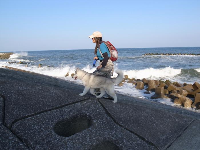 はなちゃん太平洋を見る_c0049299_20102078.jpg
