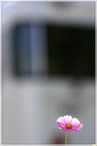 『1日1ケツ』_e0235910_9441938.jpg