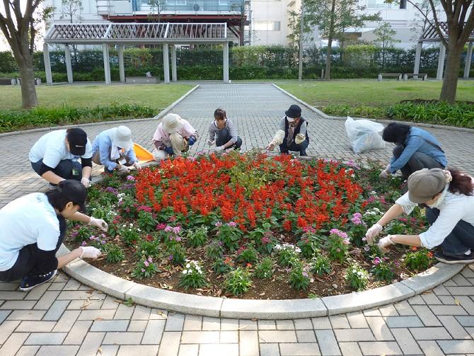 【10月30日ガーデンクラブの活動】_e0235911_1710515.jpg